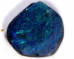 BLACK OPAL ROUGH  2.6 CTS DT-3829