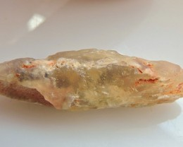 17.10ct NATURAL OPALISED VEGETATION FOSSIL L/RIDGE