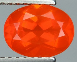 1.03 Cts Natural Mexican Orang Fire Opal Oval Cut - NR Auction