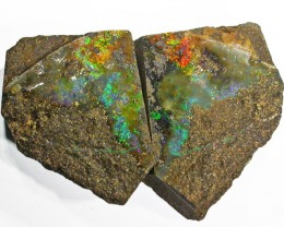 Pair good Boulder opals    QOM1609