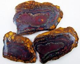 Polished specimen Yowah Opal  AGR1913