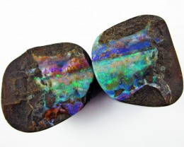 Polished specimen Boulder Opal  AGR1916