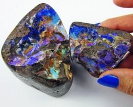 Polished specimen Boulder Opal  AGR1917