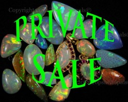 ~PRIVATE AUCTION~PRIVATE AUCTION~