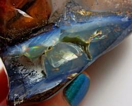 Solid  Polished Boulder Opal  Specimen  BU 161