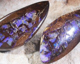 61.1 CTS BOULDER OPAL FOSSIL-YOWAH [SO5275]