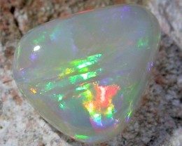 UNIQUE SHELL OPAL   FO98