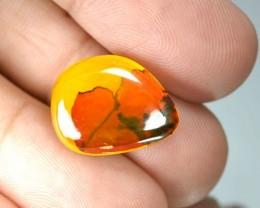 Dendritic Opal Stones