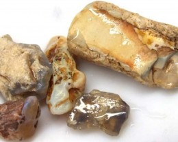25 CTS OPAL FOSSIL WOOD parcel  FO-310