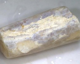 25 CTS FOSSIL BELEMNITE  FO-346
