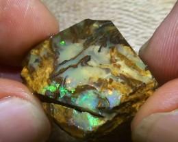 34.65 Oplaised Wood Rough Rub Solid Boulder Opal