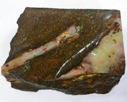 149CT   Fossil Boulder Opal specimen BU 1010