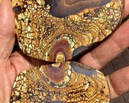 0.67 kilo Massive Polished Split  Boulder Opal specimen BU 102
