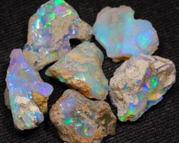 44Ct Nicce Color Ethiopian Welo Rough Fossil Opal