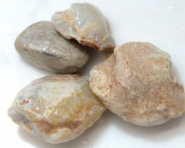 155 CTS OPAL CLAMSHELL PARCEL  FO-537