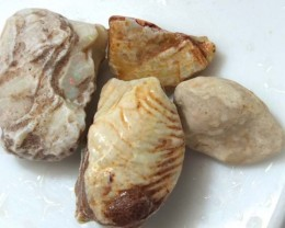 95 CTS OPAL CLAMSHELL PARCEL  FO-537