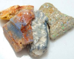 35 CTS OPAL FOSSIL WOOD PARCEL FO-556