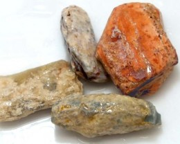 35 CTS OPAL FOSSIL WOOD PARCEL FO-587