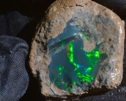 31.75ct Natural Rough Gem Grade Solid Blueish\ Greenish Beaiutiful Opal