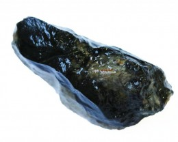 47.2 CTS INDONESIAN NATURAL BLACK POTCH [VS7055 ]