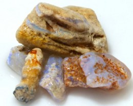 35 CTS OPAL FOSSIL WOOD PARCEL FO-647