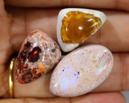 34 CTS OPAL 3 MEXICAN CABS FOB-613