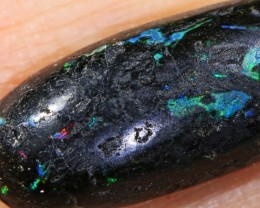 8.2 CTS INDONESIAN WOOD FOSSIL OPAL ROUGH [VS7161 ]
