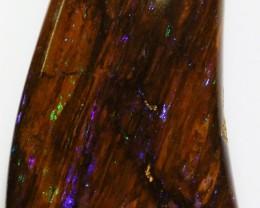 69.6Cts Boulder Wood Fossil polished  BU 2123