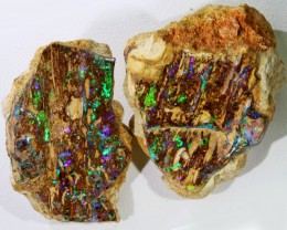 126 Cts Pair Boulder Wood Fossil polished  BU 2148