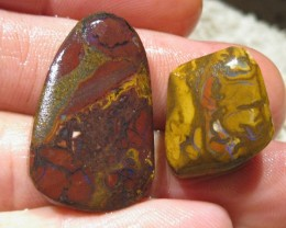 OpalWeb *60.6Cts - Yowah Boulder Matrix Opal 'RUBS'