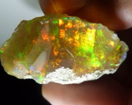 48.45cts. Quality Rough Ethiopian Wello Opal Specimen
