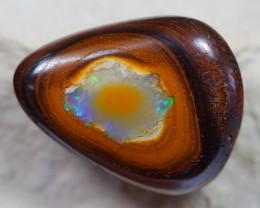 48.91Ct Polished Queensland Yowah Boulder Opal