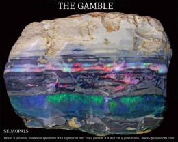 TEN  OPAL POSTERS OF GAMBLE ROUGH SPECIMEN.