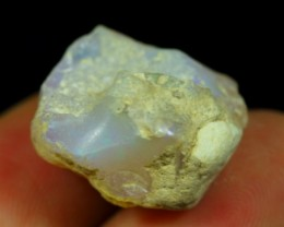 12.81Cts Natural Ethiopian Welo Rough Opal