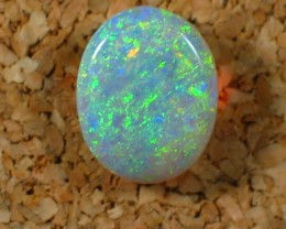 Solid Crystal Opal (22) from Lightning Ridge