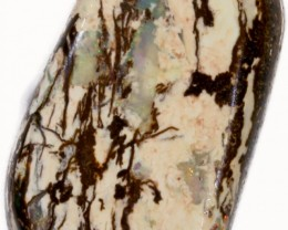 11.80 CTS BOULDER WOOD FOSSIL-WINTON [SO7774]