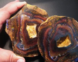 3287ct Australian Boulder Yowah Nut Specimenn, 37x25x17mm