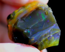 55Ct Untreated Ethiopian Welo Rough Specimen Rough Opal