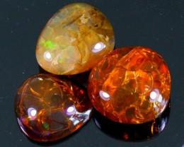 156Ct / 3Pcs Ethiopian Welo Polished Specimen Opal