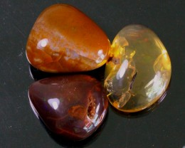 95Ct / 3Pcs Ethiopian Welo Polished Specimen Opal
