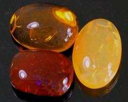 74Ct / 3Pcs Ethiopian Welo Polished Specimen Opal