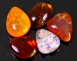 55Ct / 5Pcs Ethiopian Welo Polished Specimen Opal