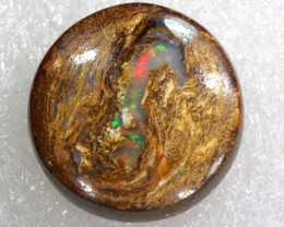 13.6 CTS BOULDER WOOD FOSSIL OPAL STONES   NC-4813