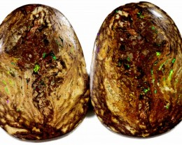 73.2 Cts Pair Boulder Wood Fossil CF877