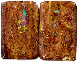 31.4 Cts Pair Boulder Wood Fossil CF878