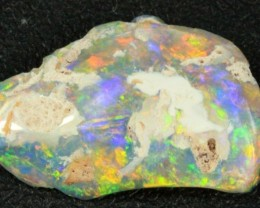 6 cts Fossil Rough Solid Polished Opal Lightning Ridge specimen