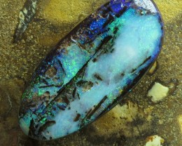 "28cts.""WOOD OPAL~OPALIZED WOOD"""