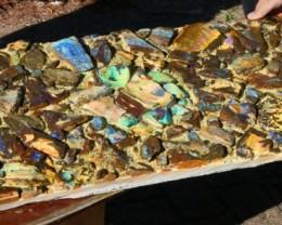 Boulder Opal Art Display