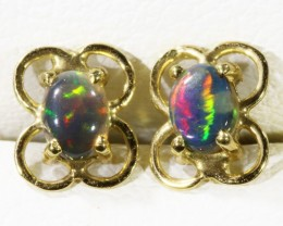 Solid Black Opal set in 18k yellow gold Earring CF1194