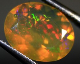 Faceted Wello Opal Cts 1.20   RD434
